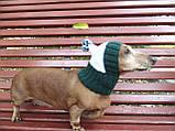 Шапка для собаки вязанная универсальная, фото 4