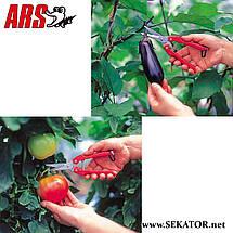 Секатор ARS SE-45 , фото 2