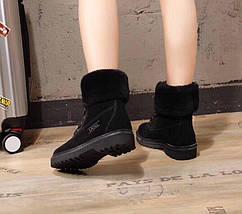 Женские замшевые зимние ботинки UGG.Купить в Украине!, фото 2