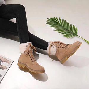 Женские замшевые зимние ботинки UGG бежевые