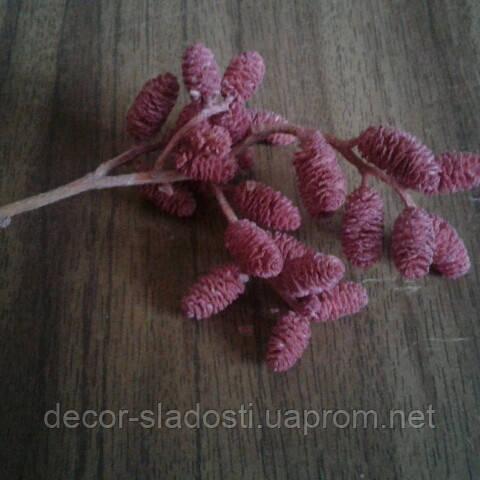 Сухоцвет шишки стабилизированные