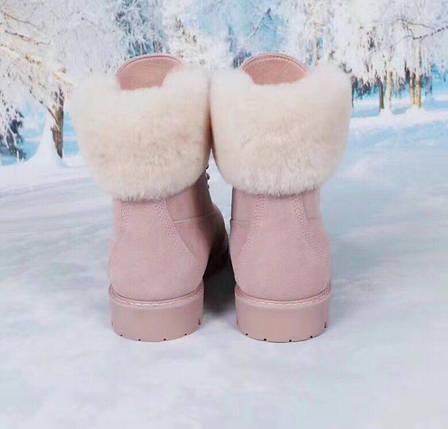 Женские замшевые зимние ботинки UGG розовые , фото 2