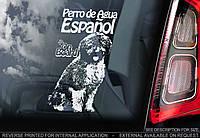 Испанская водяная собака (перро де аква эспаньол) стикер