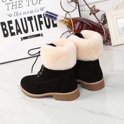 Женские замшевые зимние ботинки UGG черные , фото 2