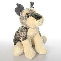 Мягкая игрушка 10227  собачка, в кульке, 35см