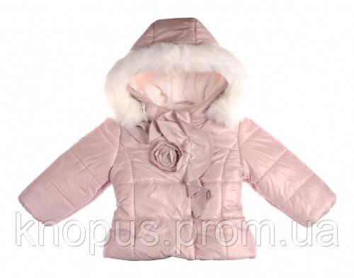 Зимняя куртка  для маленьких девочек, Garden baby , размер 92