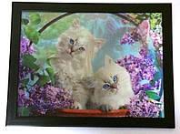 Картина трёхмерная Кошечки с объёмным эффектом 3D, фото 1