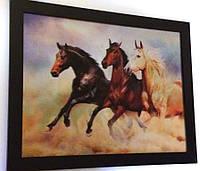 Картина трёхмерная Лошади, фото 1