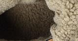 Черевики Zdlang зимові чорні, фото 2