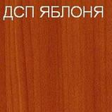 Офисная мебель в Киеве Стол письменный БЮ 108, фото 3
