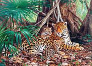 """Пазлы Castorland C-300280 """"Ягуар в джунглях"""" на 3000 элементов (C-300280), фото 2"""