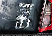 Веттерхун, голландский водяной спаниель стикер