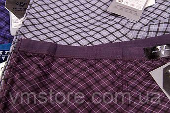Мужское белье трусы Vericoh увеличенные тонкая резинка 650В, фото 3