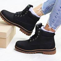Женские ботинки зимние Timberland, кожа нубук, черные, Тимберленд 2018
