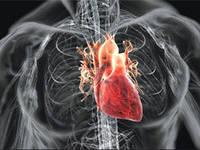 Как избежать болезней сердца?