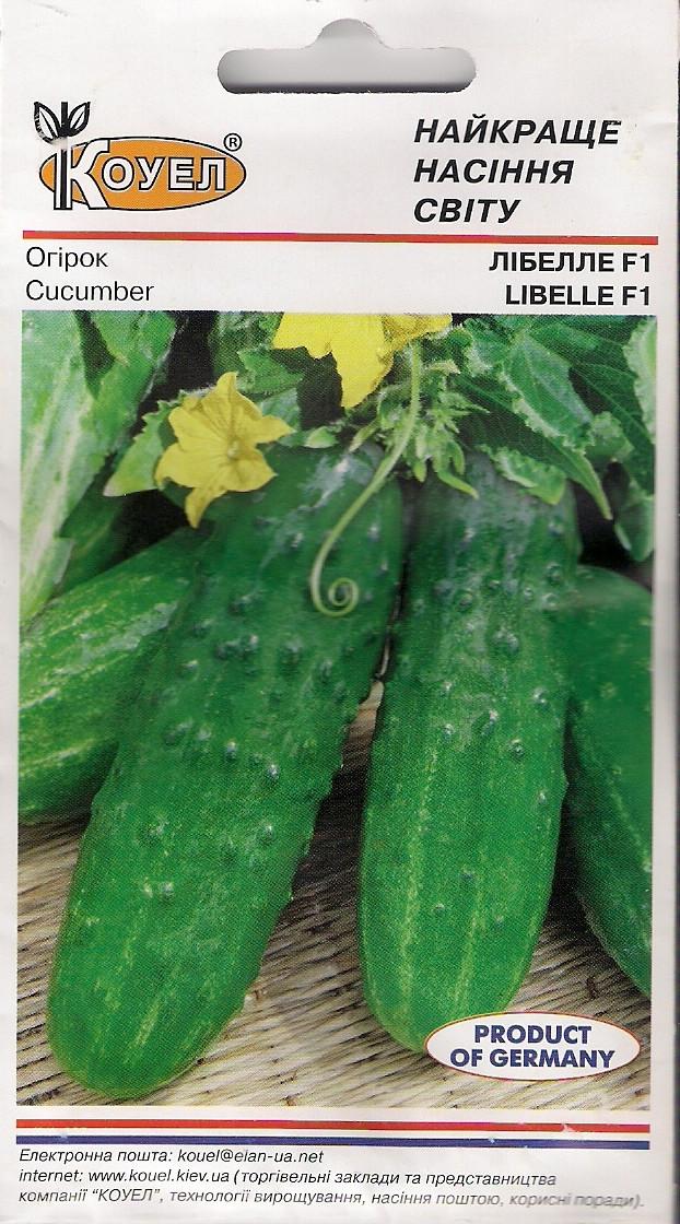 Семена огурец Либелле F1 Женский тип цветения, фото 1