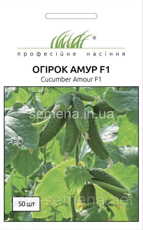Огірок Амур F1  50 шт