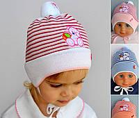 Детская шапка Тедди, хлопок, р. 42-46 см (6-18 мес). Бело-бирюзовый, розовые, голуб, бел+розов.