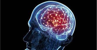 Для улучшения мозговой активности