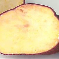 Маточный клубень Батат Кумара Рэд поздний сорт слабосладкий крахмалистый лежкий, фото 1
