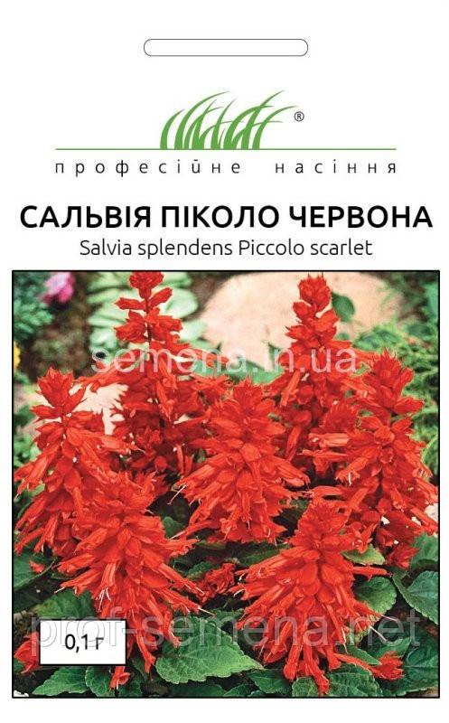 Сальвія Пікколо червона 0,1 г