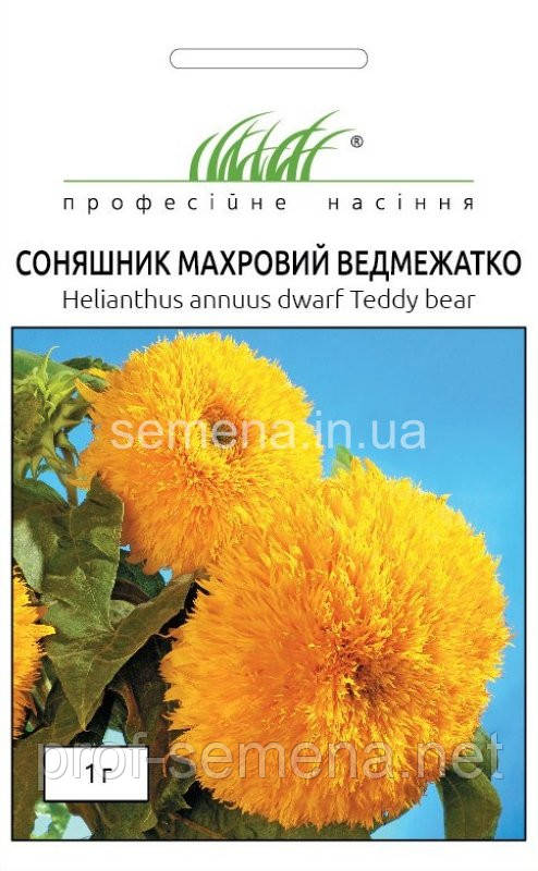 Соняшник махровий Ведмежатко 1 г.