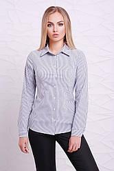 Классическая женская рубашка в черно-белую мелкую полоску с длинными рукавами блуза Рубьера д/р