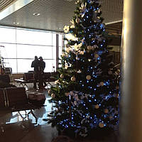Новогодняя елка на прокат