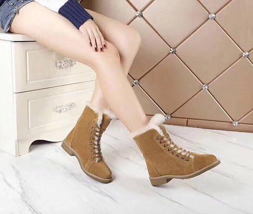 Женские замшевые зимние ботинки UGG.коричневые купить в Украине!, фото 2