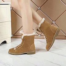 Женские замшевые зимние ботинки UGG.коричневые купить в Украине!, фото 3