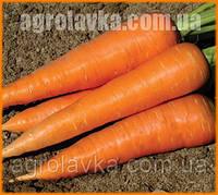 Семена моркови Кордоба F1/ Cordoba F1  (2,0-2,2 мм) (1 млн. сем.), Bejo, Нидерланды