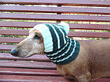Шапка для собаки,шапка для маленької собачки,шапка для такси,зимова шапка, фото 5