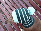 Шапка для собаки,шапка для маленької собачки,шапка для такси,зимова шапка, фото 7