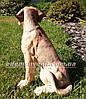 Садовая фигура Лабрадор с костью, фото 2