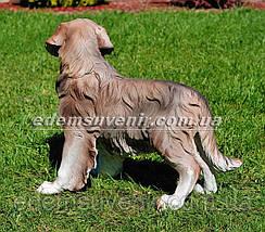 Садовая фигура собака Ретривер, фото 3