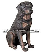 Садовая фигура собака Ротвейлер, фото 2