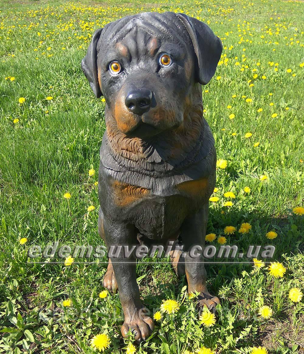 Садовая фигура собака Ротвейлер