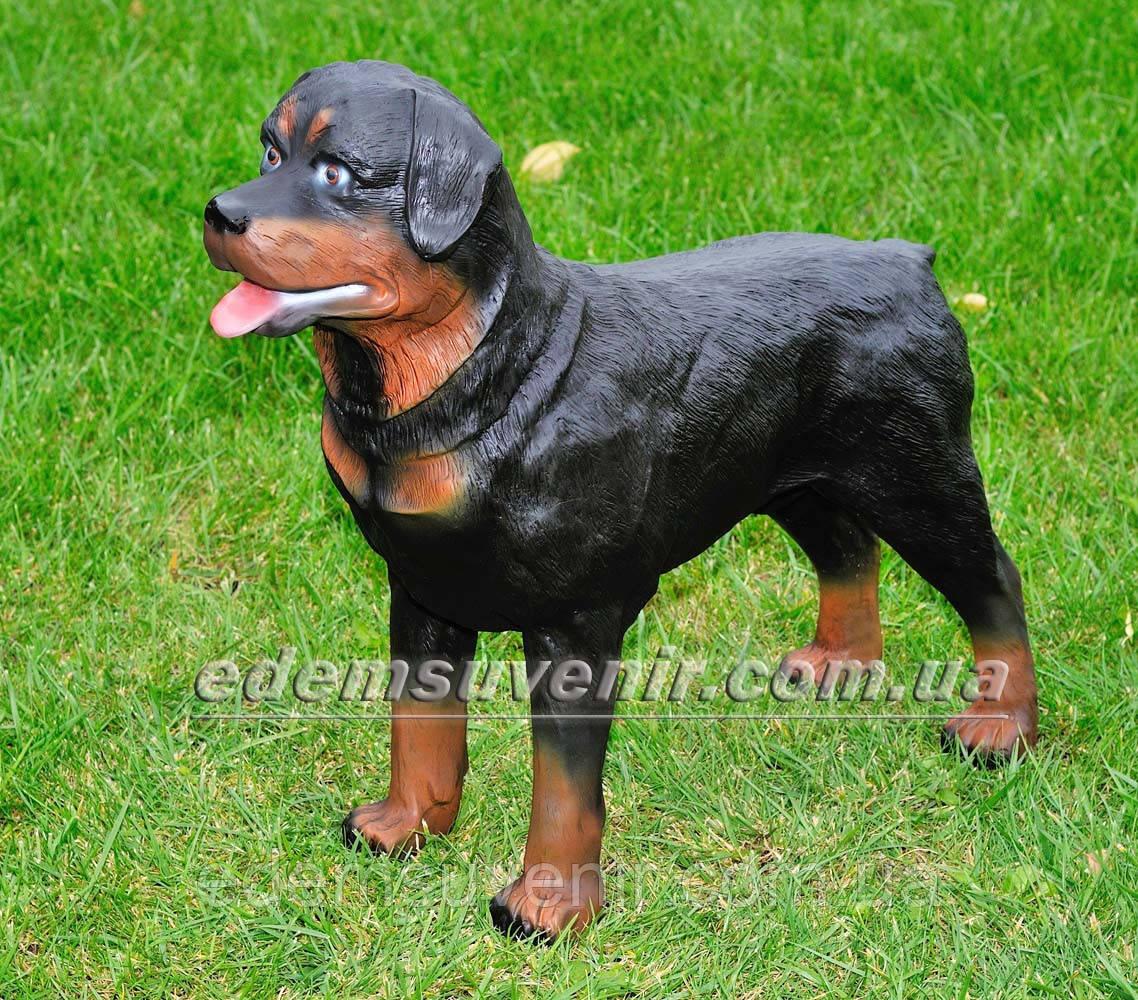 Садовая фигура собака Ротвейлер стоячий