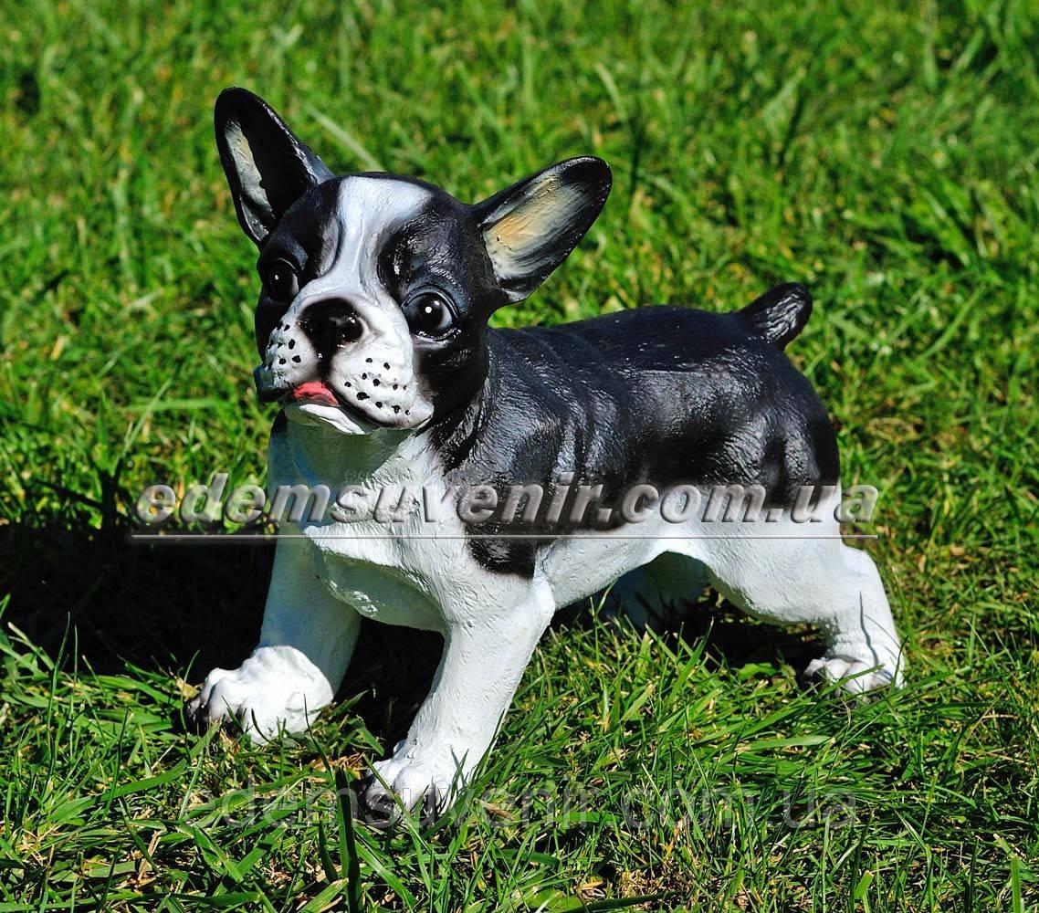 Садовая фигура собака Французский бульдог стоячий