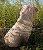 Садовая фигура собака Шарпей сидячий, фото 2