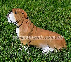 Садовая фигура Бульдог сидячий, фото 2