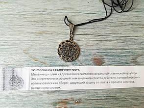 Молвинец в солнечном круге, фото 2