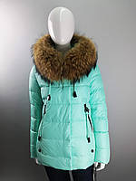 Короткая куртка женская бирюзовая с мехом енота на воротнике ТМ Jarius