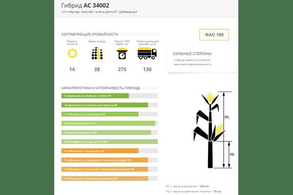 Семена кукурузы АС 34002, ФАО 190