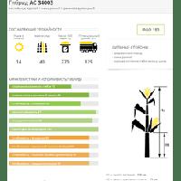Семена кукурузы АС 34003, ФАО 180