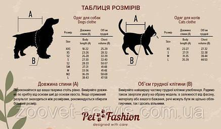 Свитер Pet Fashion Крисс серо-голубой S, фото 2