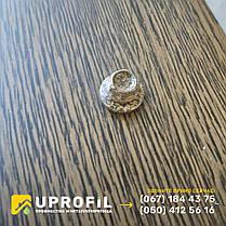 Саморезы Золотой Дуб для профнастила под дерево 4.8х19 по металлу, фото 3