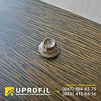 Саморезы Золотой Дуб для профнастила под дерево 4.8х19 по металлу, фото 2