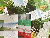 """Качественные семена кукурузы  от компании """"Селекта"""""""