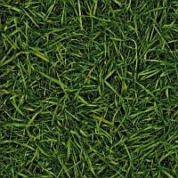Бытовой линолеум IVC Bingo Grass 025 ширина 4 метра
